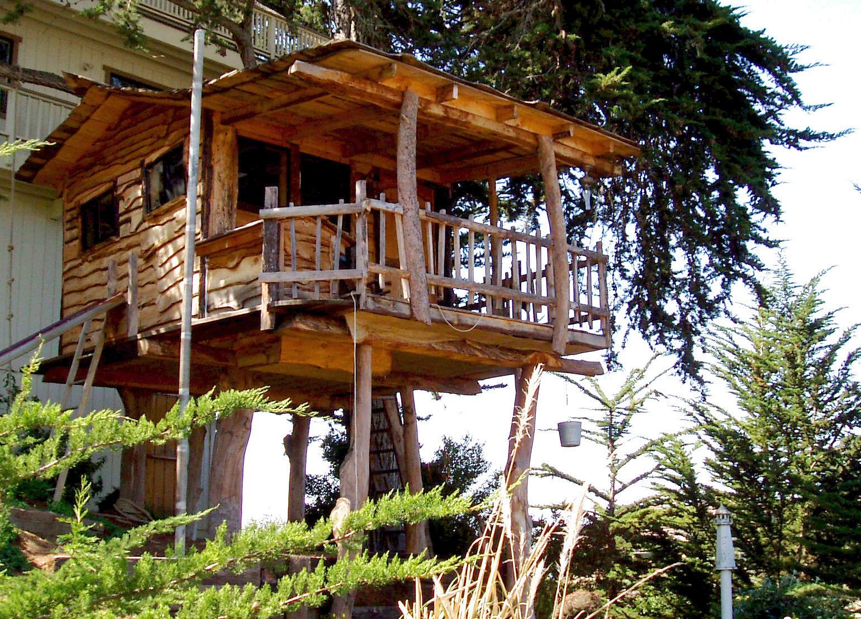 Tree_houser