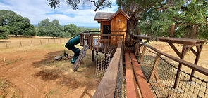 childrens-playhouse-treehouses