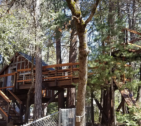 kids treehouse designs and ideas: