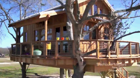 Treehouse Masters Irish Cottage animal planet. an adult treehouse. the gorgeous interior of the