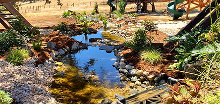 waterfall-pond-treehouse[1].jpg