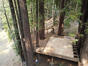 treehouse platforms