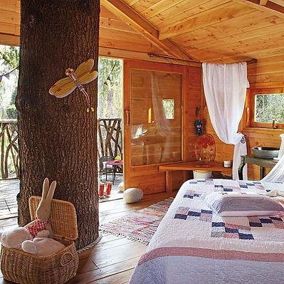 family-tree-house-interior-decorating-ideas