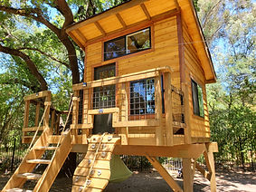 the magical tree house