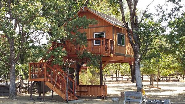 treehouse-builders-california.jpg