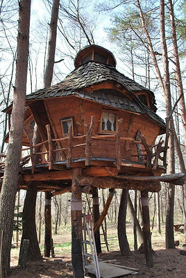 wonky-crooked-tree-houses