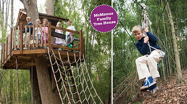 ziplines for treehouses
