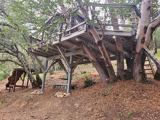 adults-kids-treehouses[1].jpg