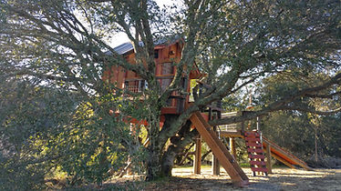 coolest kids treehouse ever