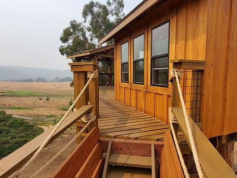 treehouse-siding[1].jpg