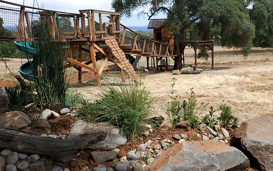 Pictures-of-kids-treehouses[1].jpg