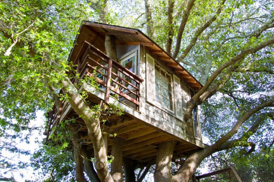 luxury-tree-houses