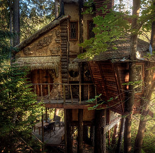 hobbit treehouse