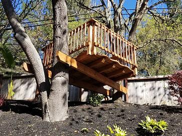 backyard_treedeck3.jpg