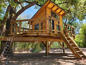 the magical tree house kids treehouse d
