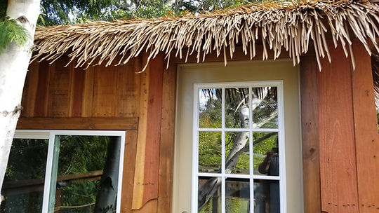 tropical-treehouses-designs[1].jpg