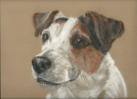 The Surrey Ark Pet Portrait