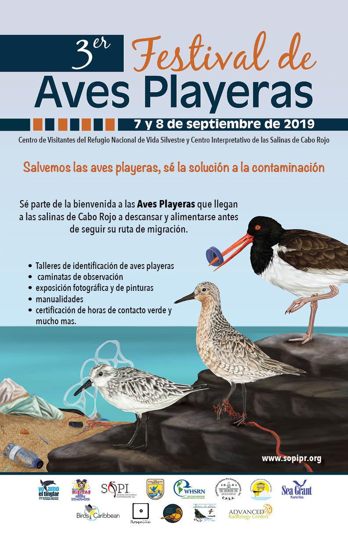 Festival de Aves Playeras 2019