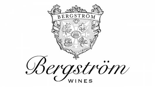 bergstrom-logo-768x432.png