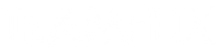 Logo TEAMFLIX blanc.png