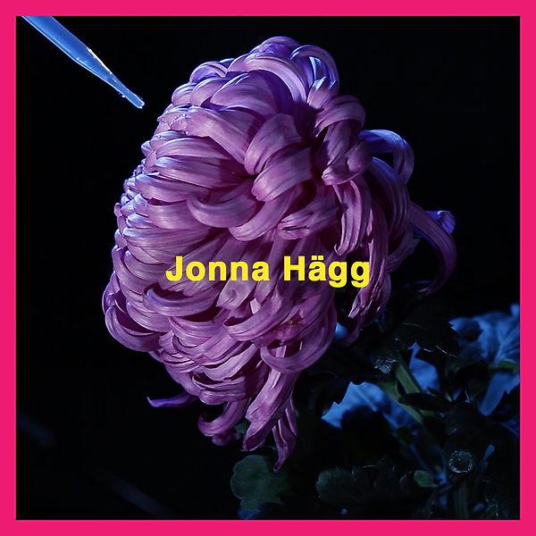 FS19_1.1_SoMe_Jonna_Hägg_final.jpg