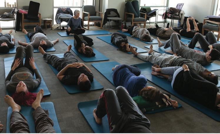 yoga at osher.jpeg