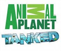 Tanked Animal Planet