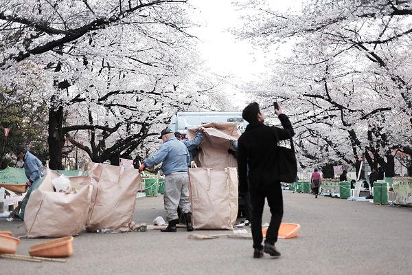 Sakura Festival in Tokyo Ueno Park Garbage Truck and Photo