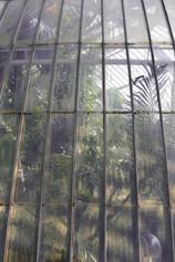 Kew Gardens London Palm House outside