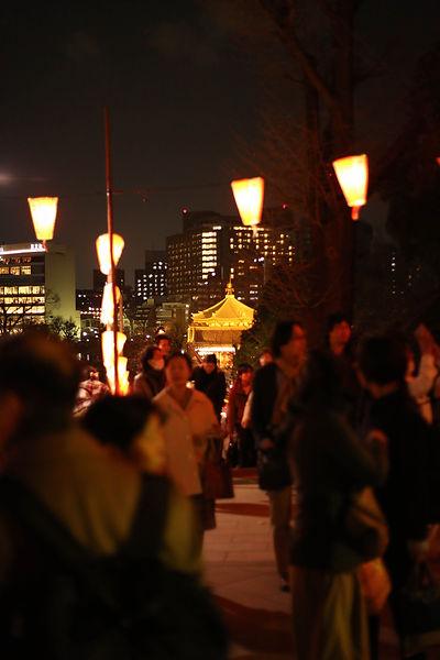 Sakura Festival in Tokyo Ueno Park with Golden Temple