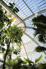 Kew Gardens London Palm House.jpg