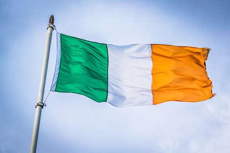 Trends in Marketing in Ireland