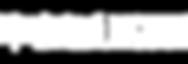 лого СПБ вестник.png