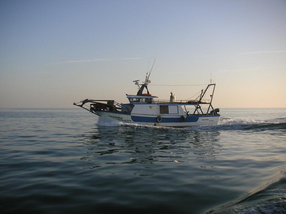 barca in mare 003.jpg