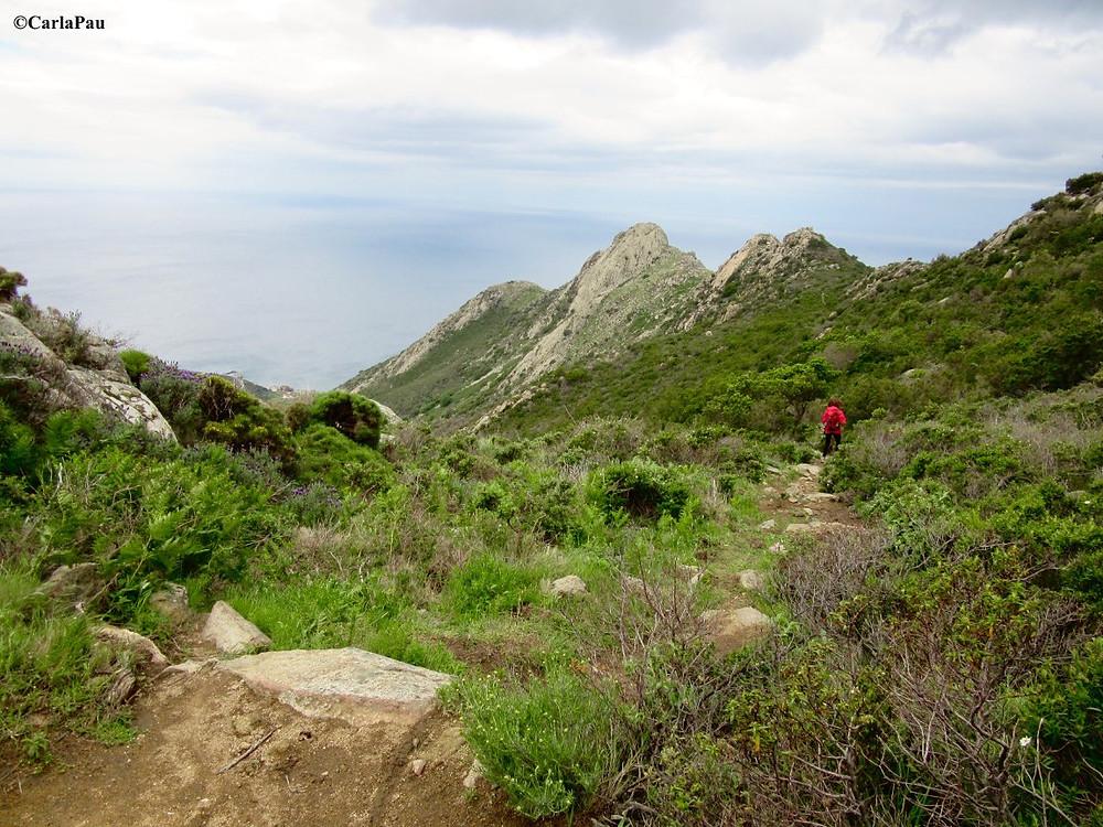 elba-isola-arcipelago-toscano-viaggio-in-barca-a-vela-trekking