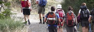 Viaggio trekking da Firenze a Siena | Trekkilandia |