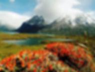 Trekking Patagonia|Trekkiandia