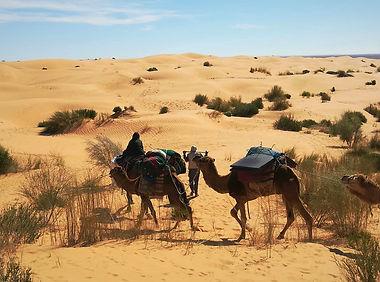 TUNISIA 3.jpg