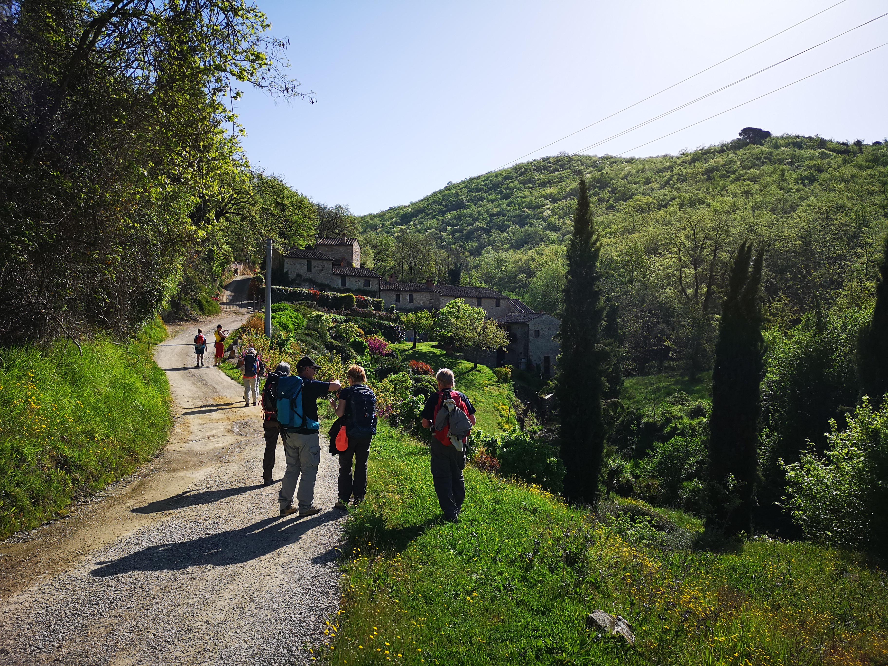 La Via Romea del Chianti