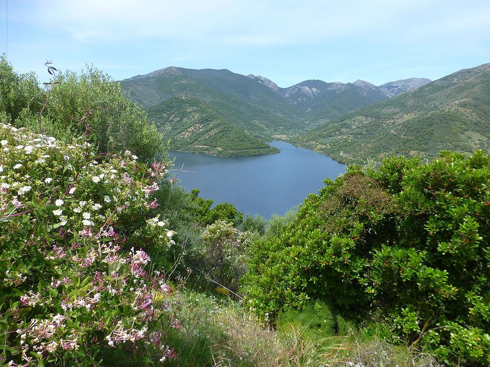 lago-rio-leni-monti-mannu-villacidro-lungo-il-cammino-di-santa-barbara