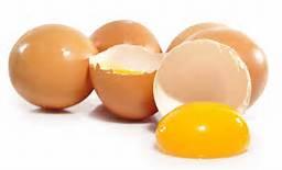 The Incredible, Edible, Egg.