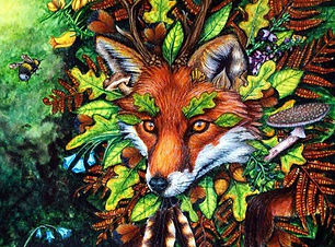 Leicestershire Fox by Fay Brotherhood (2