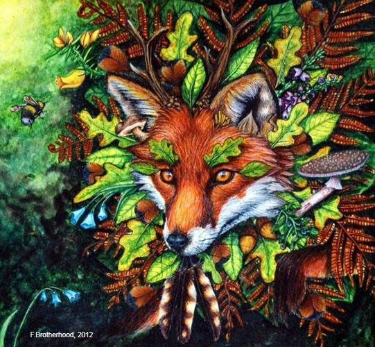Leicestershire Fox (2012)