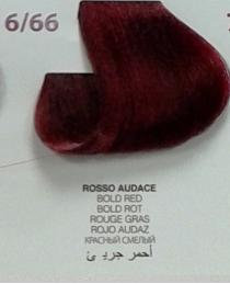 colore in olio event n ° 6.66