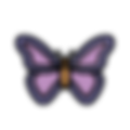 class-logos_05-butterfly_wix-small-120x1