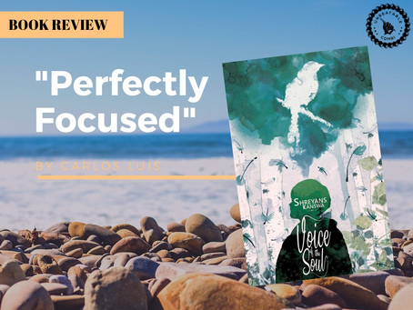 Book Review: 'Voice of the Soul' by Shreyans Kanswa