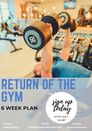 Return of the gym Promo poster.png