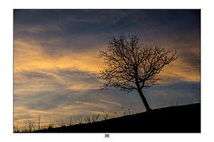 Haut Vallespir 01.jpg