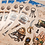 Thumbnail: Pirate Booty Sticker Sheet