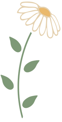 Drawn picture of a daisy